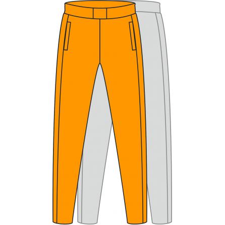 Спортивные штаны модель SH2