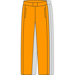 Спортивные штаны SH6